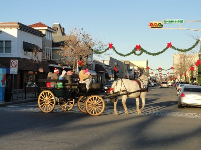 Free Horse & Carriage rides